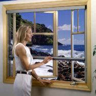 Woman-&-Window2